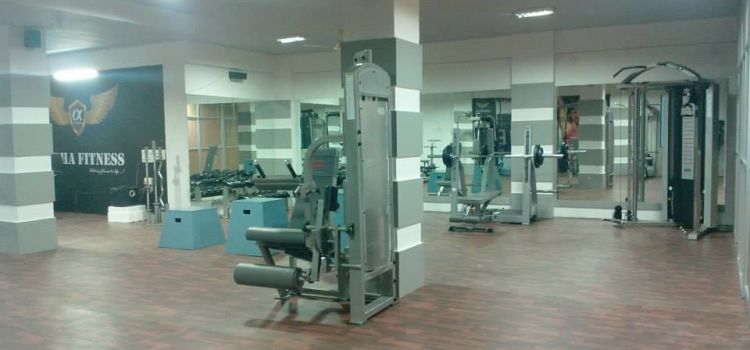 Alpha Fitness-Jayanagar 4 Block-303_gdd2wy.jpg