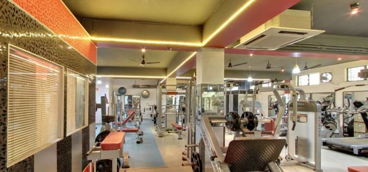 Sculpt Gym-Gurgaon Sector 14-3105_jg0ct5.jpg