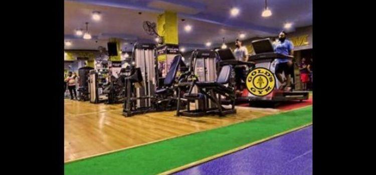 Gold Gym-S A S Nagar-5505_dvzadf.jpg