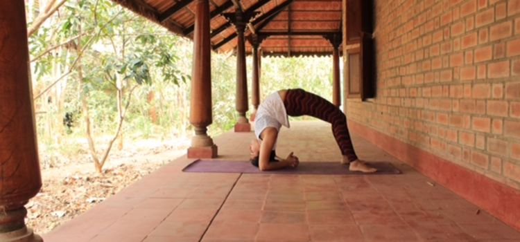Amrutha Bindu Yoga Shala-JP Nagar-8968_vb6jgf.jpg