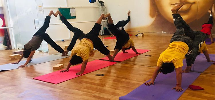 Sarva Yoga Studio-R A Puram-10707_maqai6.jpg
