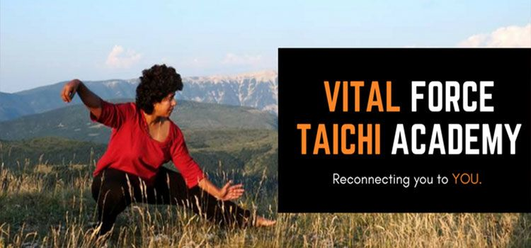 Vital Force TaiChi Academy-Vasanthnagar-11058_yls8al.jpg